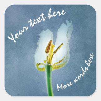 Adesivo Quadrado Flor minguante branca da tulipa