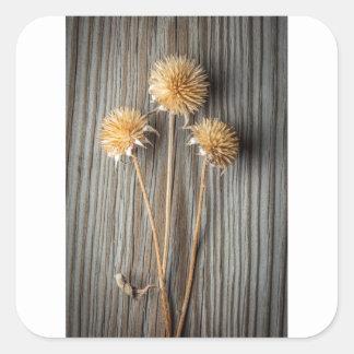 Adesivo Quadrado Flor secada de Sun