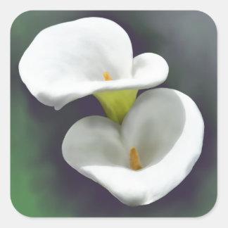 Adesivo Quadrado Flores brancas do lírio de Calla