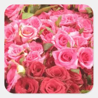 Adesivo Quadrado Flores nas Filipinas, no rosa e nas rosas