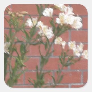 Adesivo Quadrado Flores no tijolo