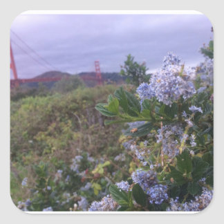 Adesivo Quadrado Flores pelo Golden Gate