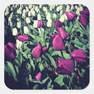Adesivo Quadrado Flores roxas