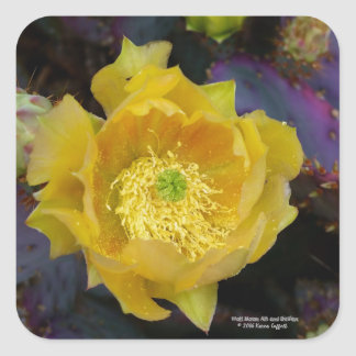 Adesivo Quadrado Flores roxas do amarelo do cacto do opuntia da