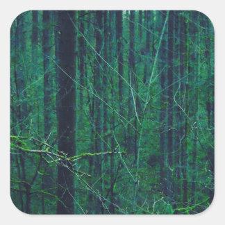 Adesivo Quadrado Floresta verde