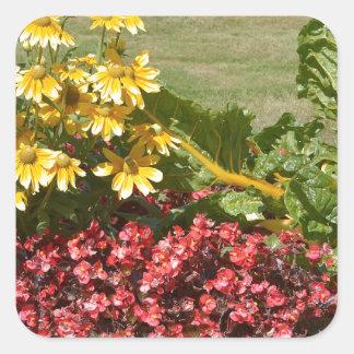 Adesivo Quadrado Flowerbed dos coneflowers e das begónias