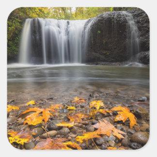 Adesivo Quadrado Folhas de bordo da queda na cachoeira escondida