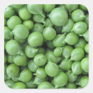 Adesivo Quadrado Fundo da ervilha verde. Textura de ervilhas verdes