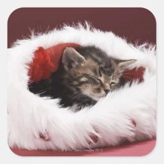 Adesivo Quadrado Gatinho adormecido no chapéu do Natal