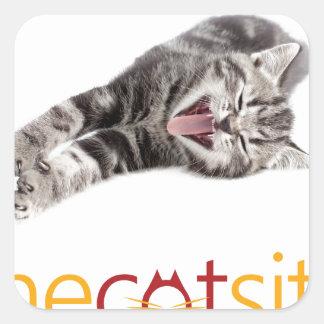 Adesivo Quadrado Gato de bocejo ou de riso