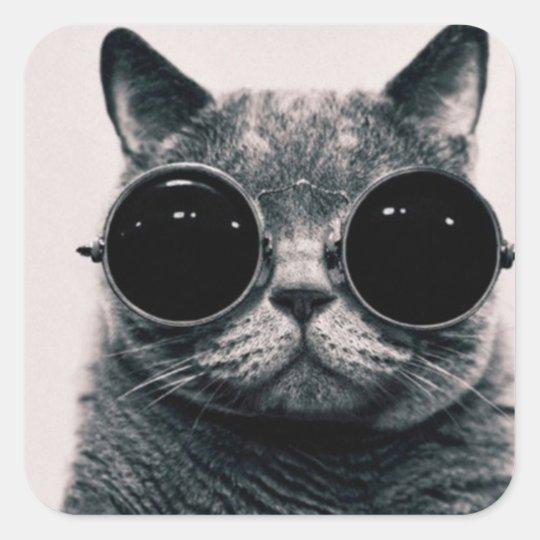 Adesivo quadrado - Gato de Óculos