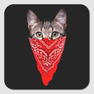 Adesivo Quadrado gato do gângster - gato do bandana - grupo do gato