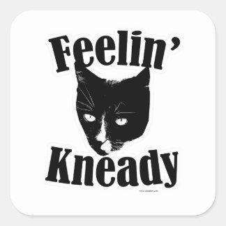 Adesivo Quadrado Gato engraçado de Feelin Kneady