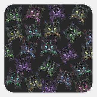 Adesivo Quadrado Gatos legal no preto! gatos Multi-coloridos