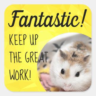 Adesivo Quadrado HammyVille - trabalho fantástico do hamster bonito