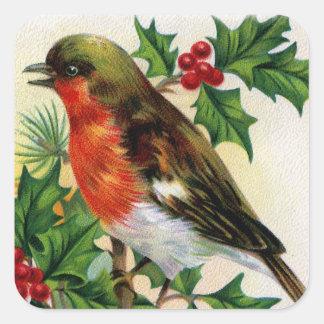 Adesivo Quadrado Ilustração do vintage do pisco de peito vermelho