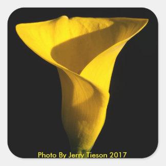 Adesivo Quadrado Íris amarela