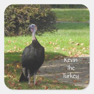 Adesivo Quadrado Kevin a Turquia - Wethersfield velho, CT