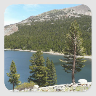 Adesivo Quadrado Lago Tenaya no parque nacional de Yosemite