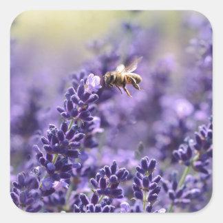 Adesivo Quadrado Lavanda e abelhas