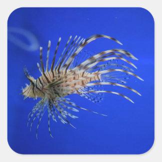 Adesivo Quadrado Lionfish