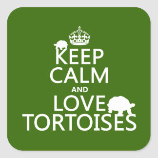 Adesivo Quadrado Mantenha a calma e ame tartarugas (alguma cor)