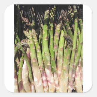 Adesivo Quadrado Mão fresca do aspargo escolhida do jardim