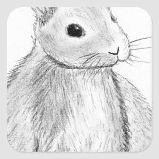 Adesivo Quadrado Mão original coelho tirado