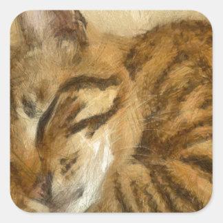 Adesivo Quadrado Mentira deixada dos gatos do sono
