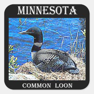 Adesivo Quadrado Mergulhão-do-norte da terra comum de Minnesota
