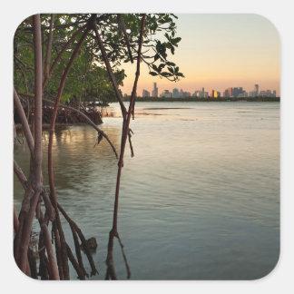 Adesivo Quadrado Miami e manguezais no por do sol
