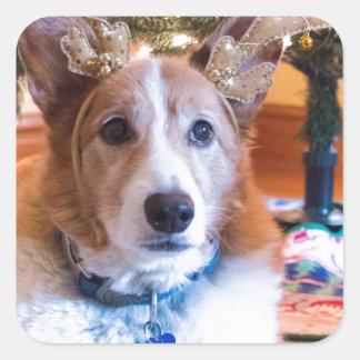 Adesivo Quadrado Natal do Corgi de Galês do Pembroke