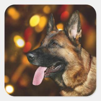 Adesivo Quadrado Natal do german shepherd