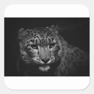 Adesivo Quadrado neve-leopardo