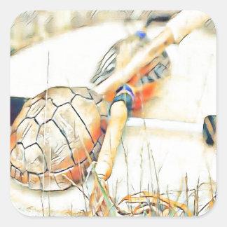 Adesivo Quadrado O clã da tartaruga chocalha e rufa