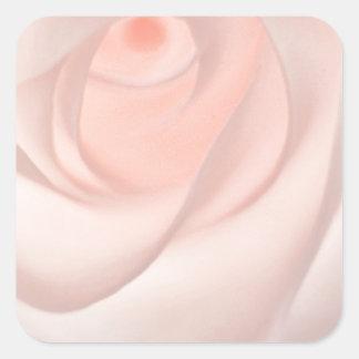 Adesivo Quadrado Olho do rosa do rosa