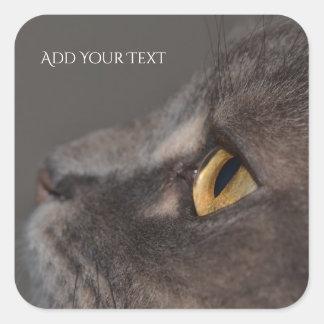 Adesivo Quadrado Olho-Macro do gato por Shirley Taylor