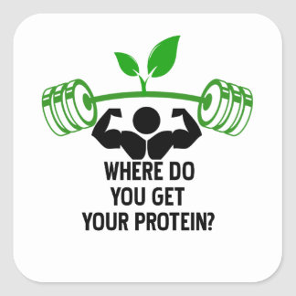 Adesivo Quadrado Onde você obtem sua proteína