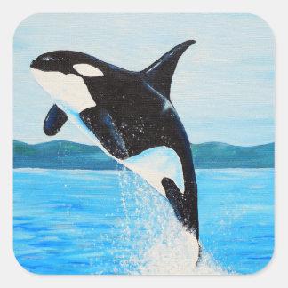 Adesivo Quadrado Orca