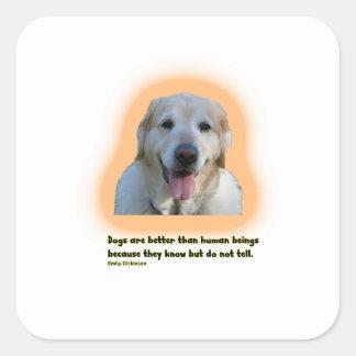 Adesivo Quadrado Os cães são melhores do que seres humanos