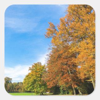 Adesivo Quadrado Paisagem colorida da queda com céu e prado das