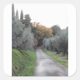Adesivo Quadrado Paisagem rural com a estrada asfaltada no outono