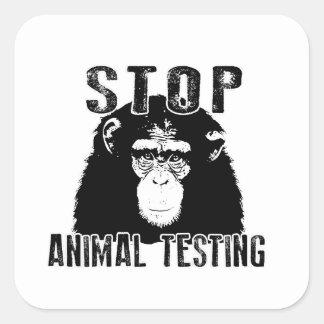 Adesivo Quadrado Pare o teste animal - chimpanzé