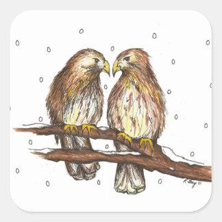 Adesivo Quadrado Pássaro atado do falcão do Central Park de Lola