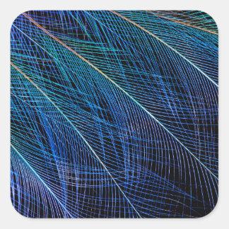 Adesivo Quadrado Pássaro azul do abstrato da pena do paraíso