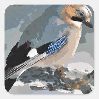 Adesivo Quadrado Pássaro de Jay no inverno