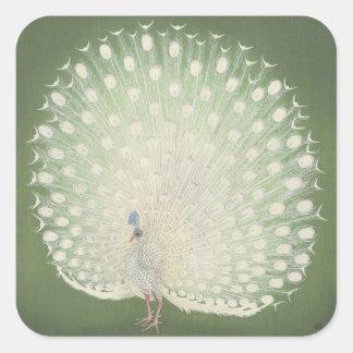 Adesivo Quadrado Pavão japonês das belas artes | do vintage