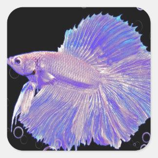Adesivo Quadrado Peixes de combate roxos iridescentes