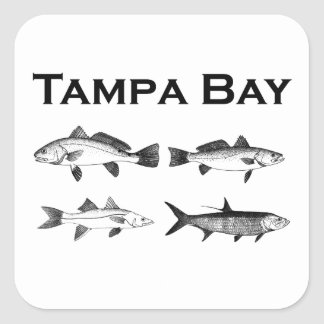 Adesivo Quadrado Pesca da água salgada de Tampa Bay