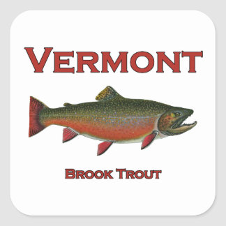Adesivo Quadrado Pesca de Vermont - truta de ribeiro